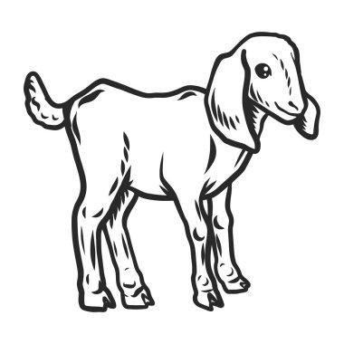 Lamb icon, hand drawn style