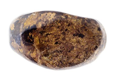macro photography of natural mineral from geological collection - polished Bronzite gemstone on white background
