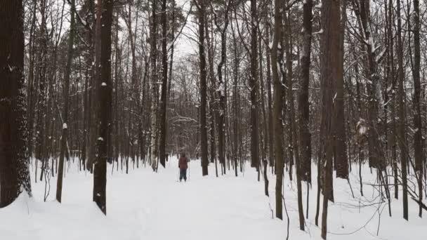 lyže lyžař na zasněžené cestě na čerstvý sníh v městském parku v zatažená zimní den