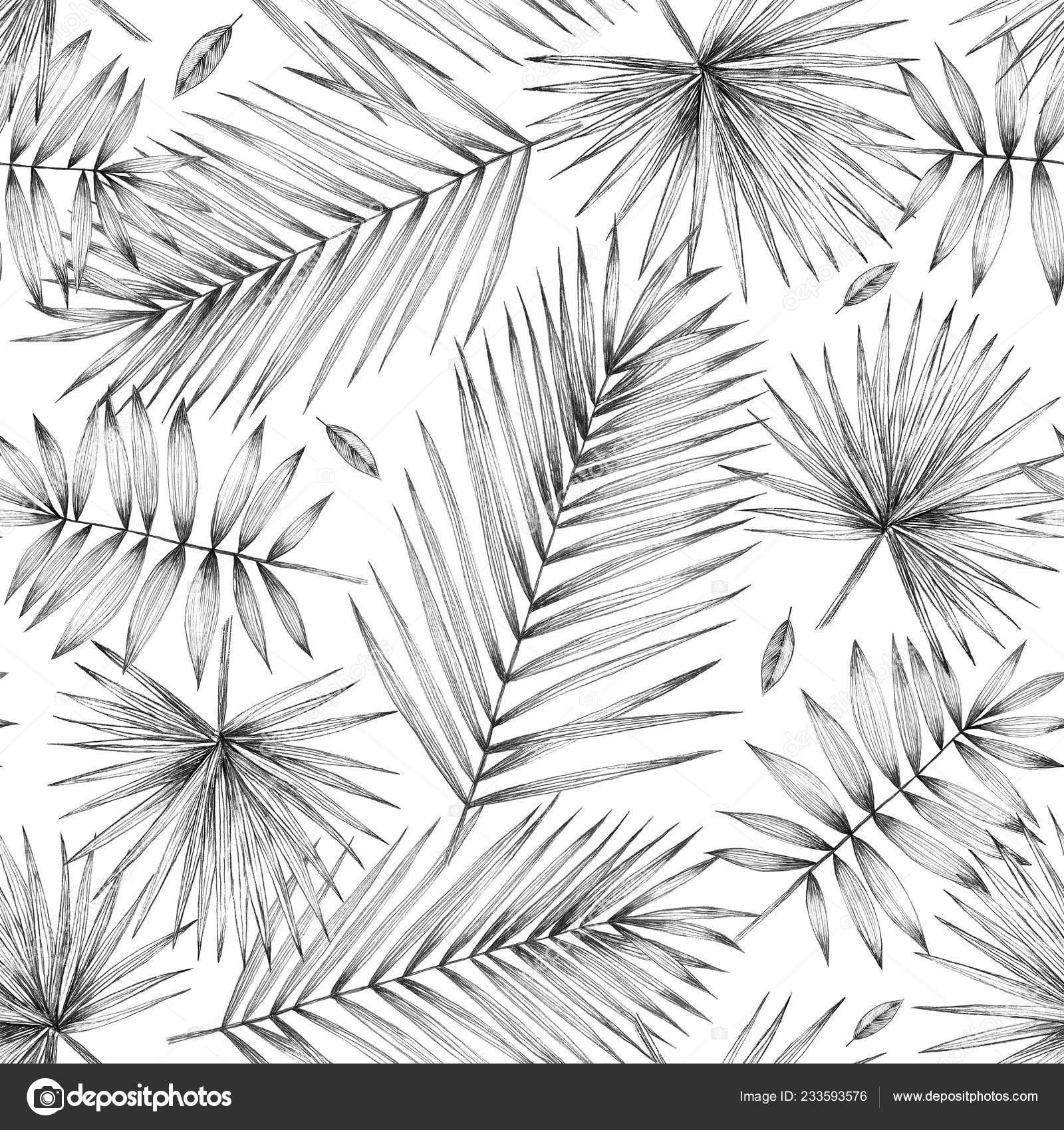 Seamless Pattern Palm Leaves Vintage Illustration Simple Pencil Drawing Manual Stock Photo C P Art 233593576