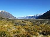 Signore della valle dellanello, Nuova Zelanda