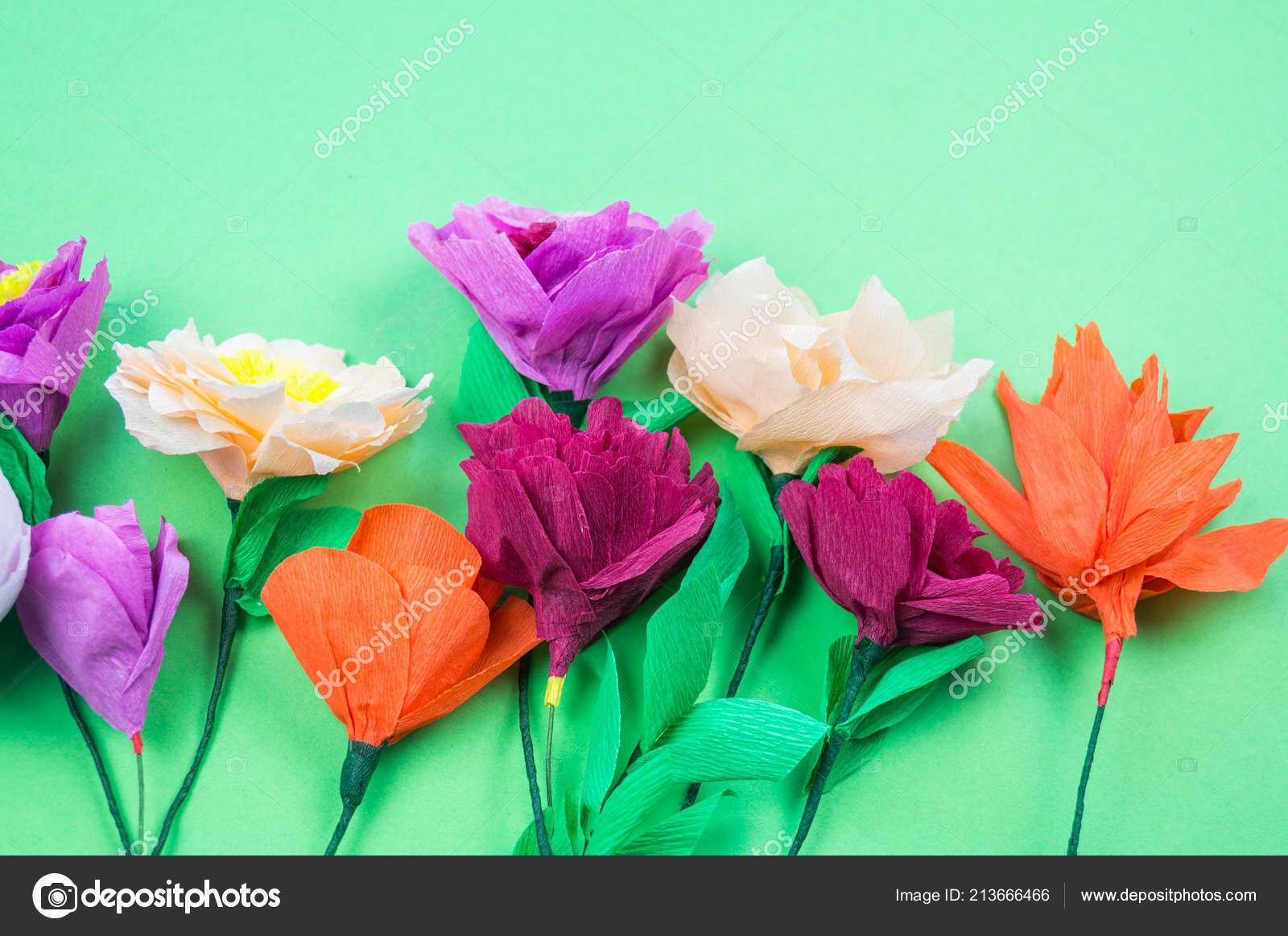 Utensils Tools Making Crepe Paper Flowers Green Background Cosmos