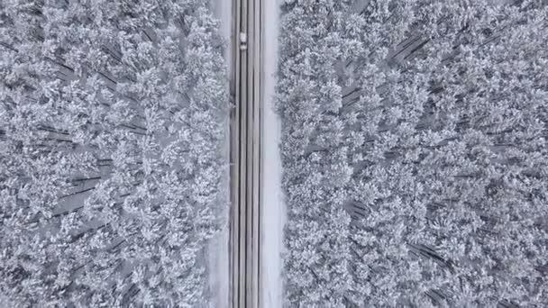 Kvadrokoptéra se pomalu letí přes silnici a Les v zimě. Sněhem pokrytá borovicemi, vrcholy stromů. Automobily jezdí opačným směrem. Velmi krásný pohled
