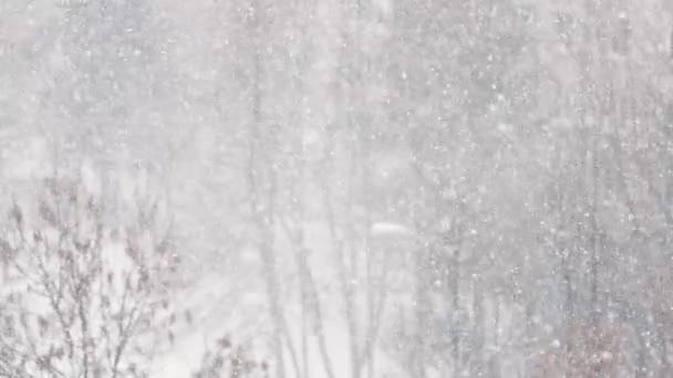 Pohádkové zimní počasí. Krásný sníh.