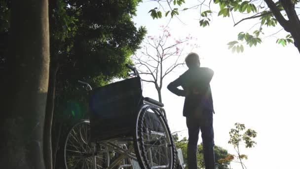 Asiate steht neben Rollstuhl und streckt Arme im Park aus