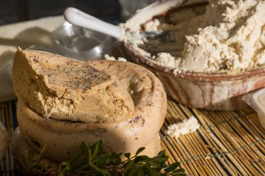 Traditional Sardinian cheese with worms. Banned and illegal cheese with flies and worms inside.