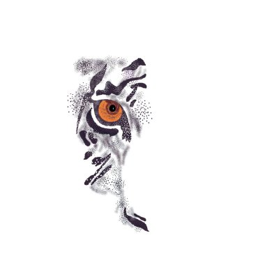 tiger face on a white background