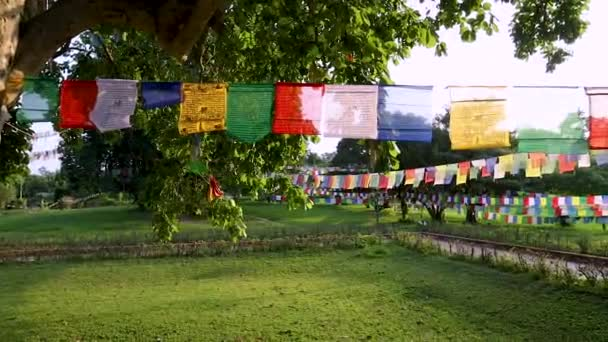 Panning výstřel modlitebních vlajek visí v Lumbini, Nepál.