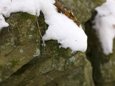 grey rock covered by white snow, close-up