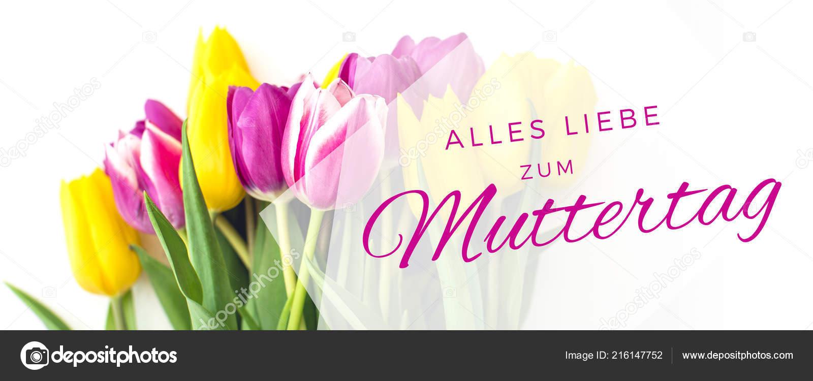 Greeting Card Pink Yellow Tulips Text Happy Birthday German