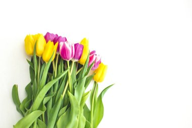 spring bouquet of purple and yellow tulips isolated on white background, close-up