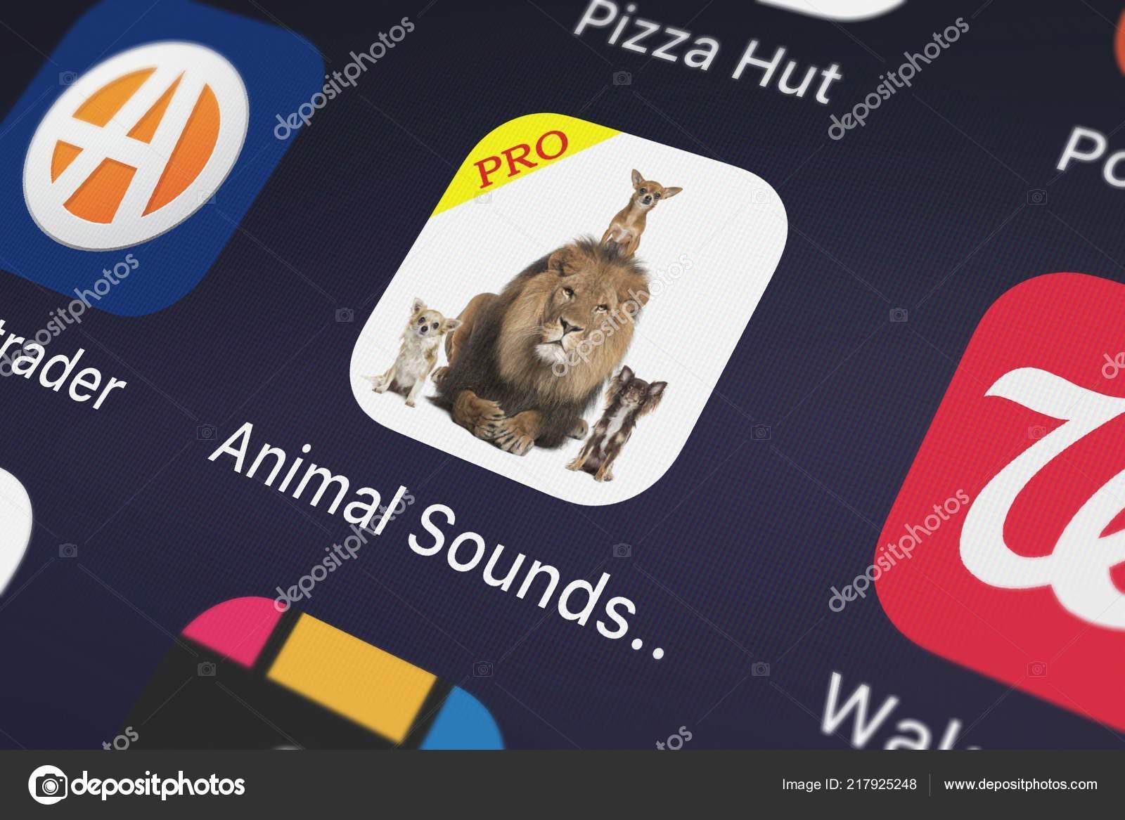 London United Kingdom September 2018 Icon Mobile App Animal