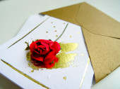 Open Envelope with a Small Holiday Card with a Red Rose