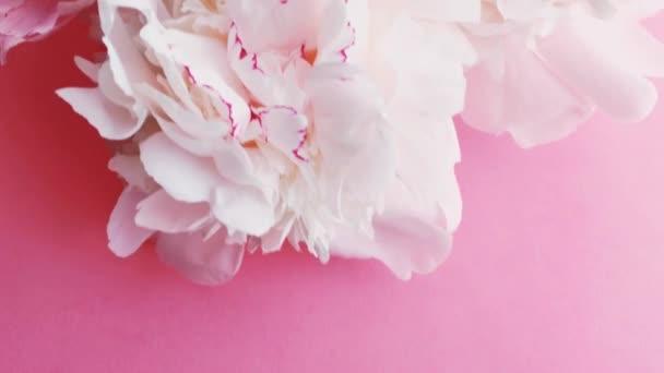 Rózsaszín parfüm palack bazsarózsa virágok, elegáns illat, mint a luxus kozmetikai, divat és szépség termék háttér