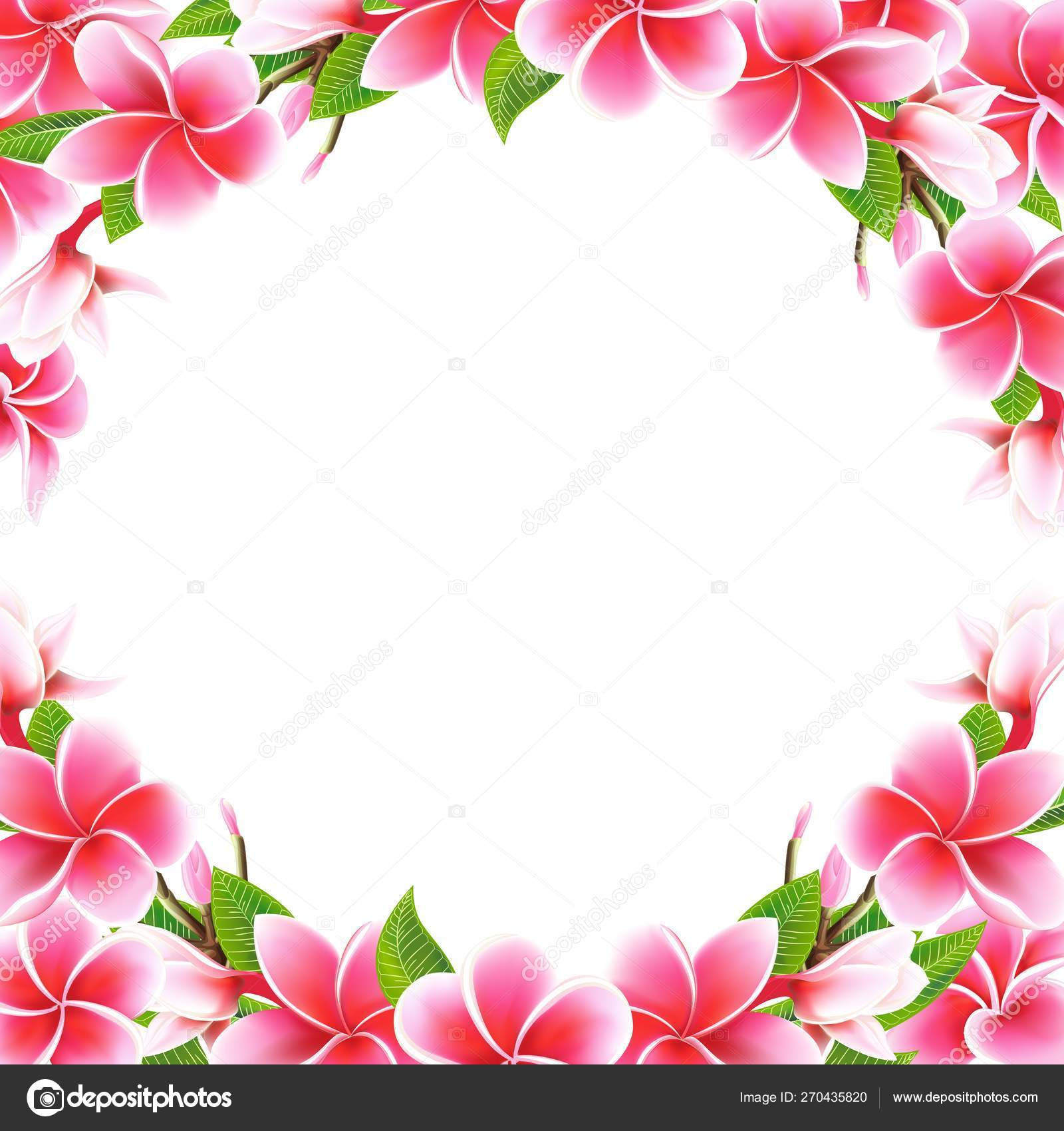 Wedding Invitation Card Floral Plumeria Frame And Lettering