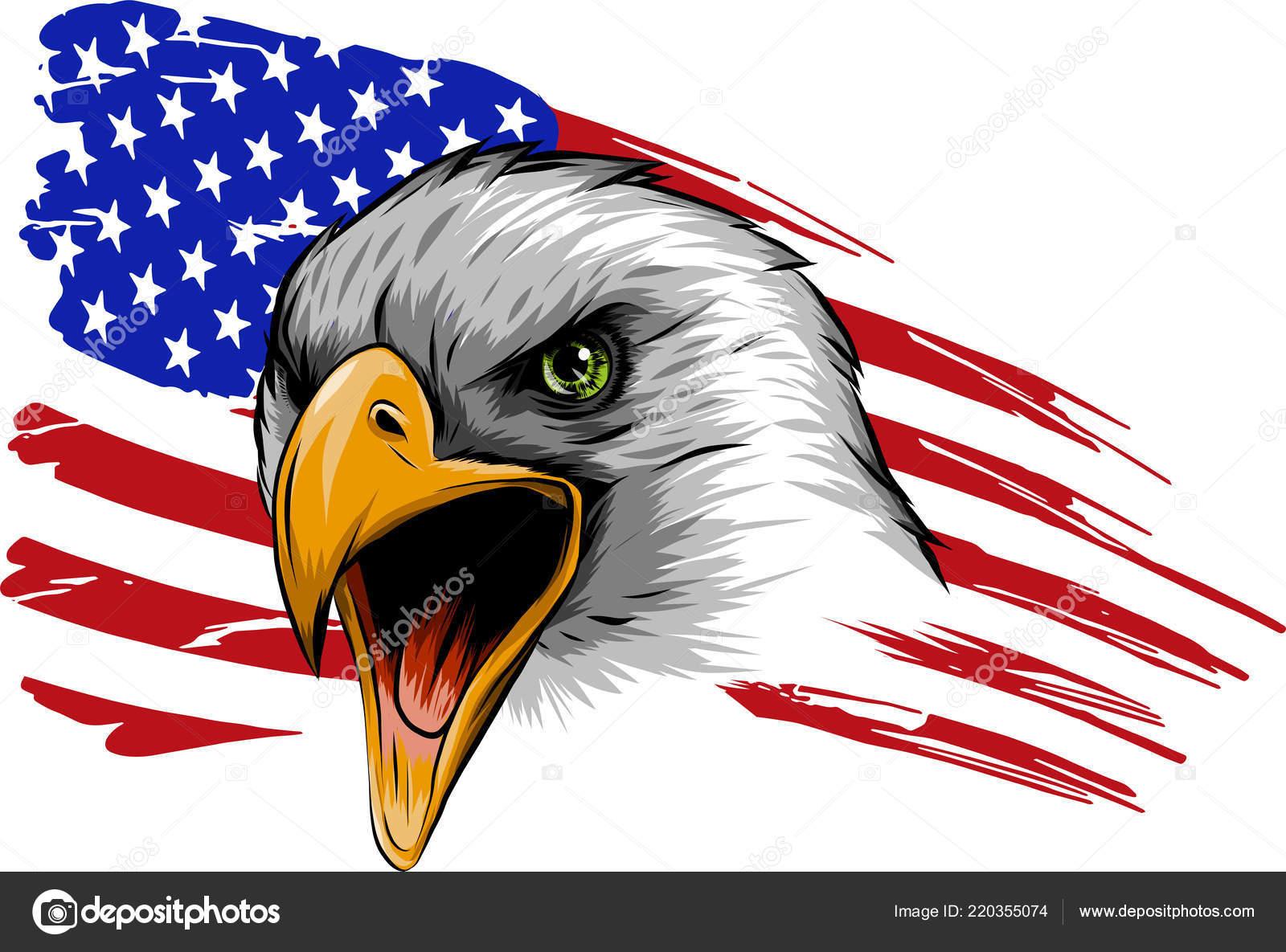 Vector American Eagle Contra Fondo Blanco Bandera Estados