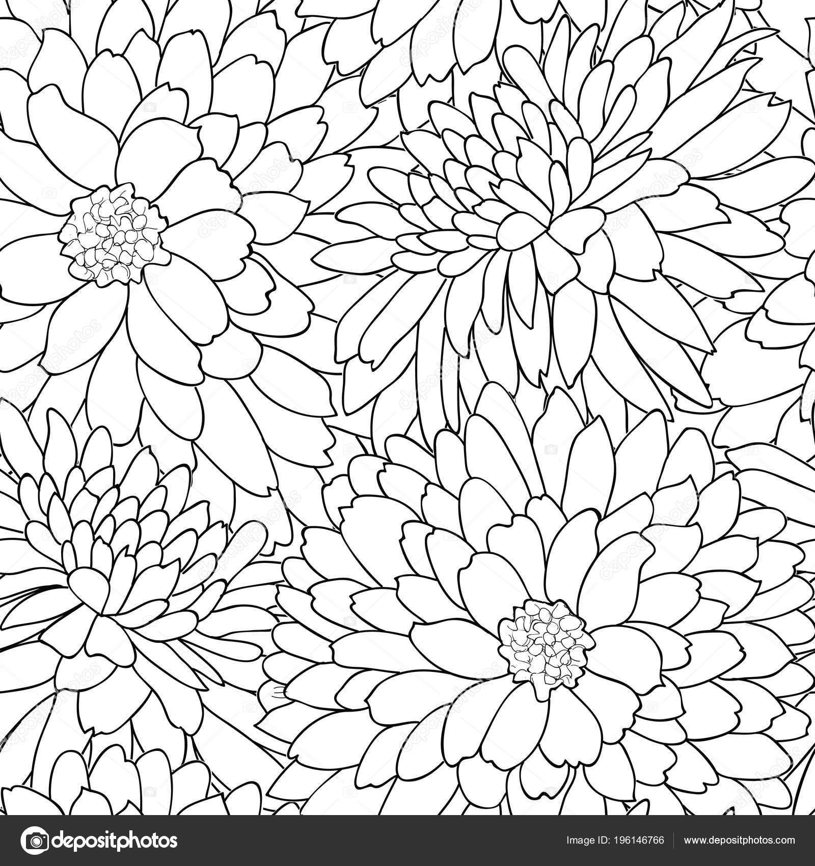 Fondo Monocromo Crisantemos Para Libro Color — Vector de stock ...