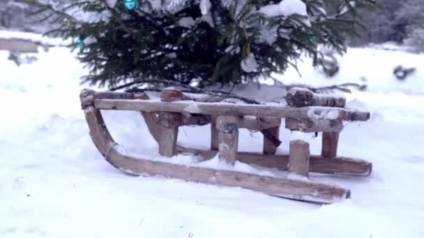 Alte Holzschlitten stehen auf weißem Schnee unter Fichten