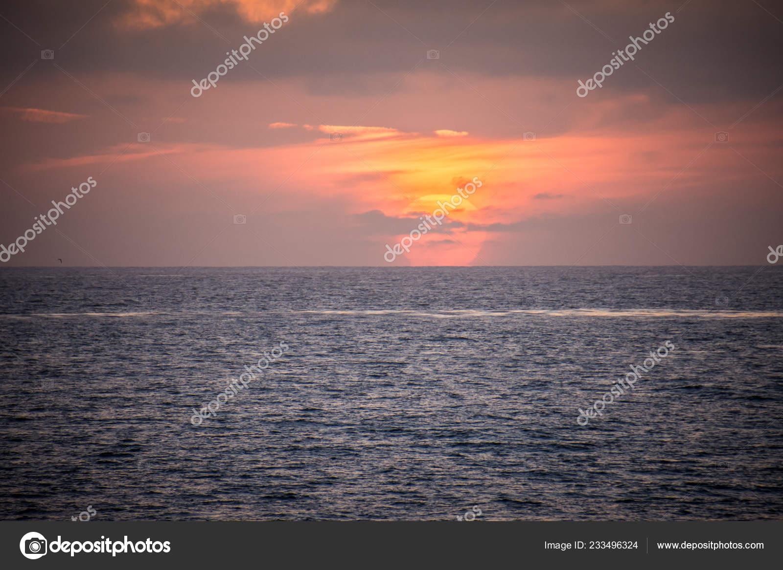 Colorful Orange Purple Sunset Pacific Ocean Jolla San Diego California Stock Photo C Mkopka 233496324