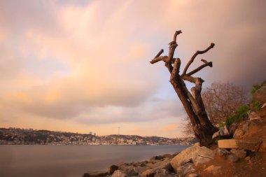 Bosphorus Bridge and Maiden's Tower