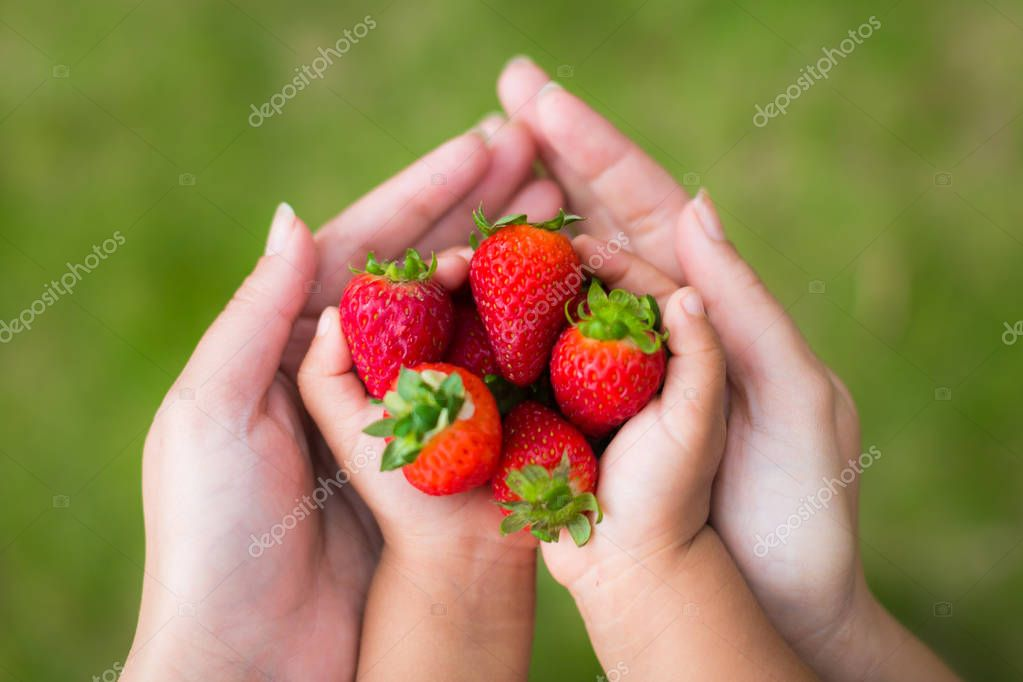 Parent and child eating strawberries together in the garden.