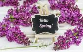 Fialovými květy a Text Ahoj jaro