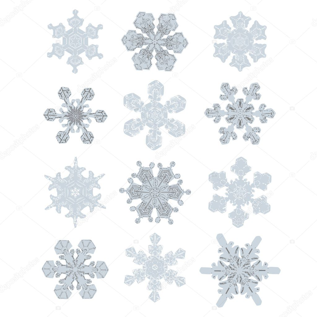 Collection of Extremely Detailed Isolated Snowflakes. Nature Alike Designs in Blue and Grey