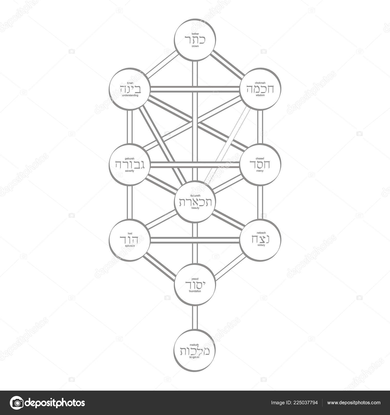 Áˆ Tree Of Life Diagram Kabbalah Stock Pictures Royalty Free Kabbalah Images Download On Depositphotos The structure is closely related to the kabbalah, the jewish mysticism. https depositphotos com 225037794 stock illustration vector icon tree life kabbalah html