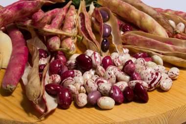 the borlotti beans have innumerable properties, they lend themselves to various recipes in the kitchen