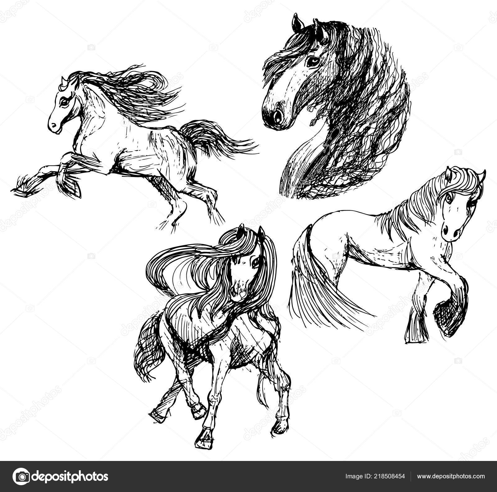 Magic Horses Illustration Isolated White Background Stock Vector C Mainfu 218508454
