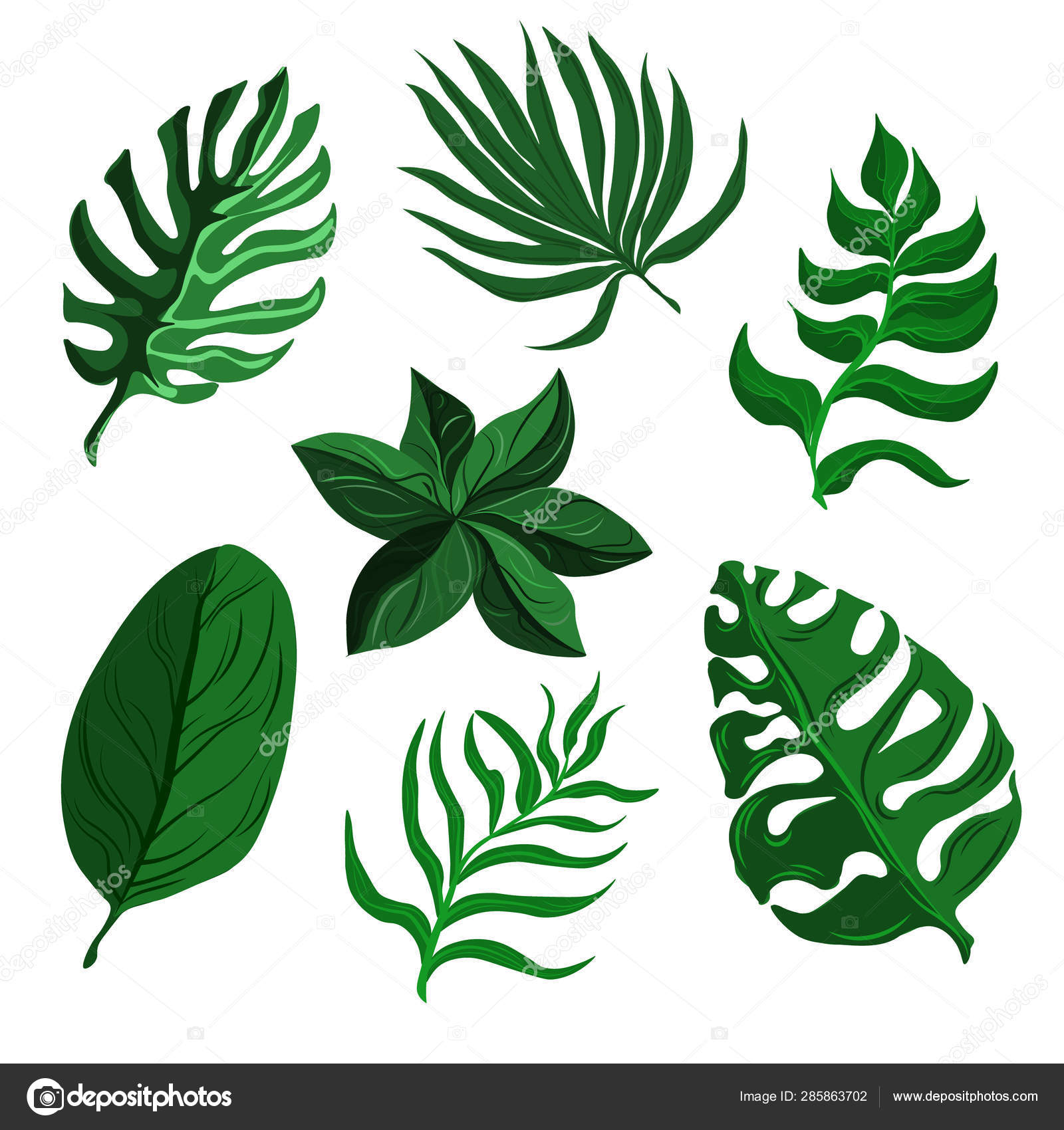 Various Shapes Green Leaves Trees Plants Elements Eco Bio Logos Stock Vector C Pavlicheva Julia Gmail Com 285863702