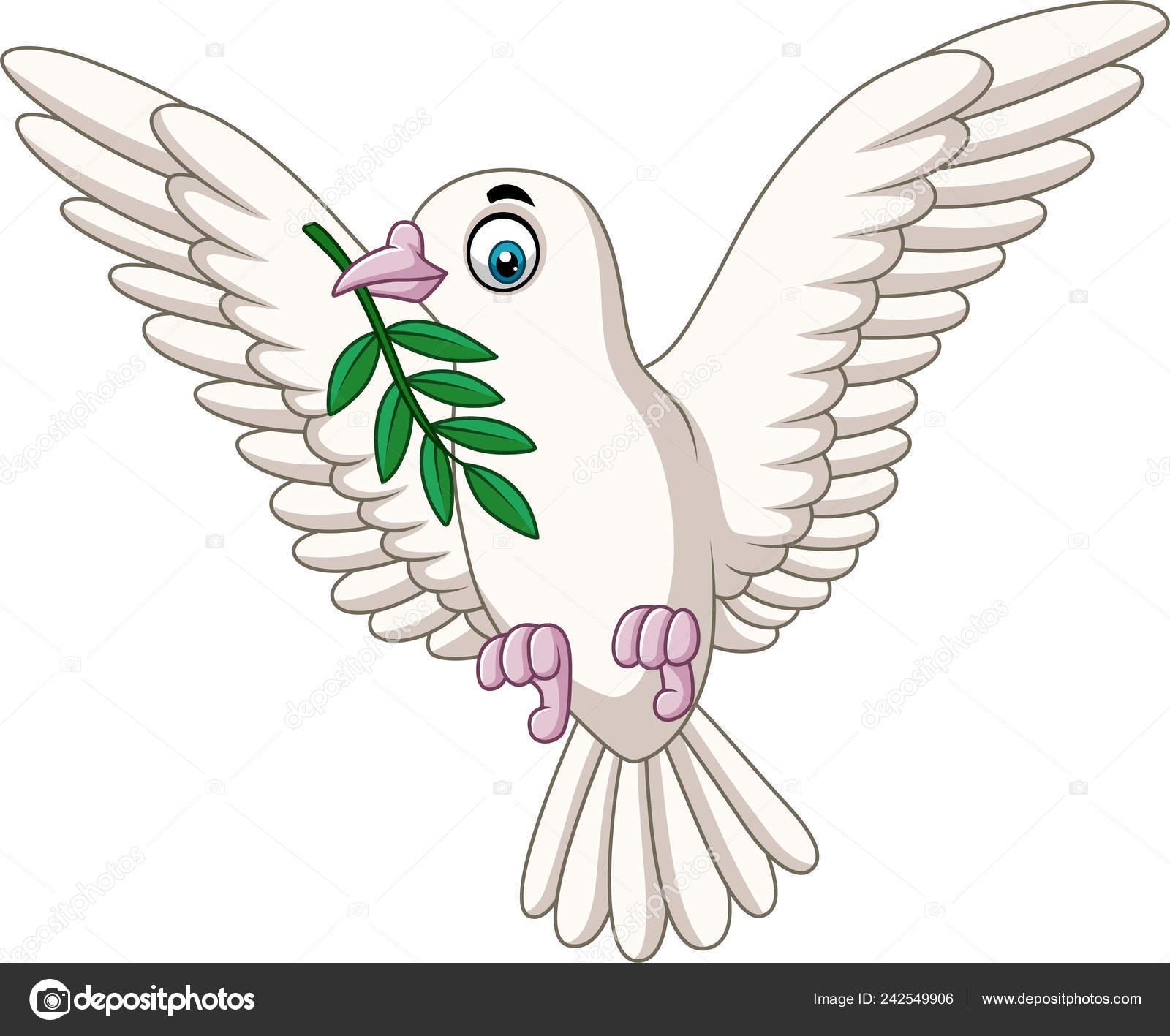 Vector Illustration Cartoon Dove Olive Branch Stock Vector C Tigatelu 242549906