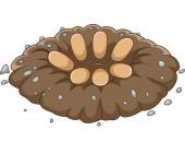 Fotografie Vector illustration of Cartoon dinosaurs egg