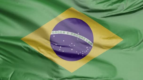 Flag of Brazil Realistic 3D