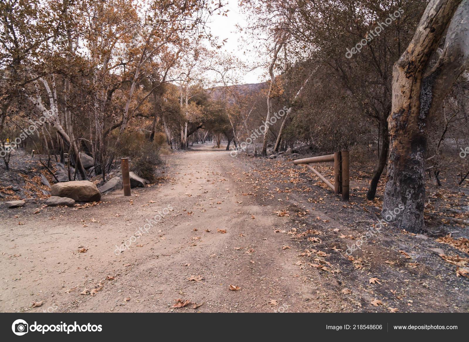 Campground Road Damaged Thomas Fire Highway Ojai California