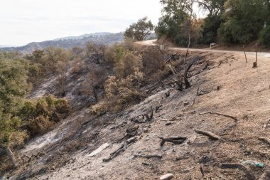 Views of Thomas Fire damage in the hills around Lake Casitas in Ojai, California