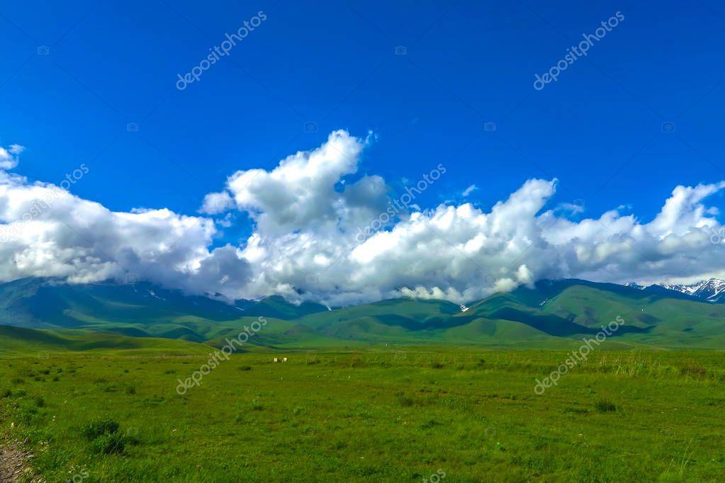 Suusamyr Too Snow Capped Mountain Range Grass Land Valley Landscape View Point