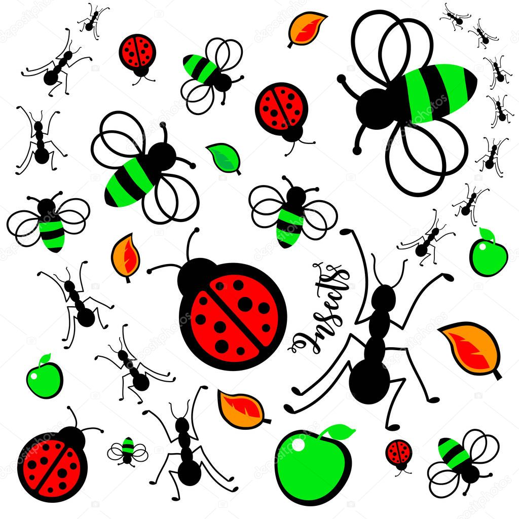 Ants Insects Color
