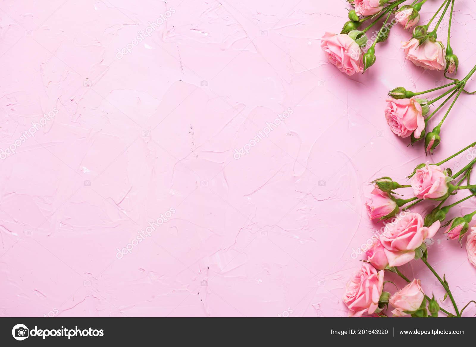 Bordo Dalle Rose Rosa Fiori Sfondo Rosa Con Texture Natura Foto