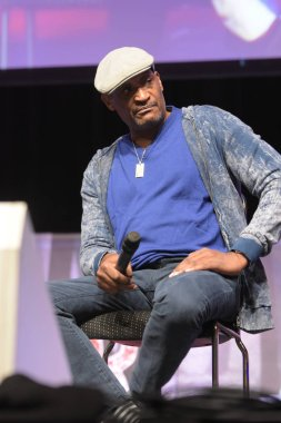 Bonn, Germany. 20th Oct 2017. Tony Todd (* 1954), US actor, talking about his experiences during a panel at Fear Con, a horror fan convention taking place in the Maritim Hotel Bonn between October 20-22nd, 2017.