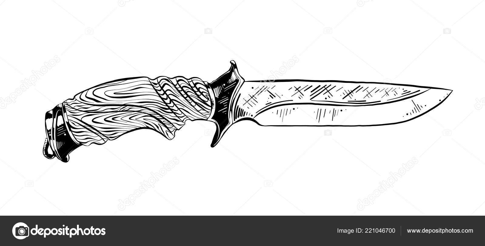 Vektorove Ilustrace Ryte Styl Pro Plakaty Dekorace Tisk Rucne Tazene