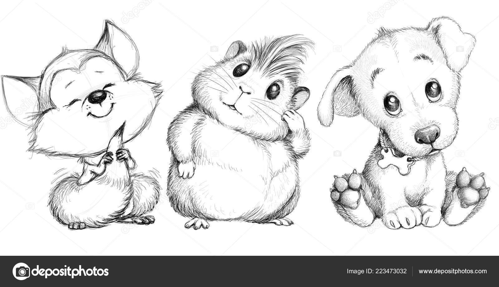 Pictures cute animals to draw illustration cute animals