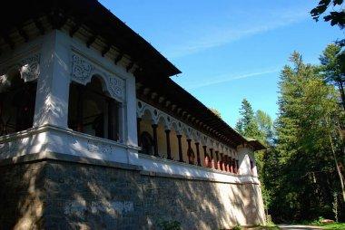 Exterior of buildings around Sinaia Monastery in Romania