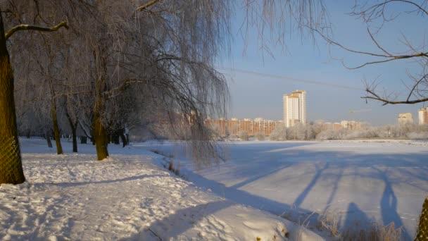 Zimní slunečného dne venku. City Park u řeky, zimní krajiny. Mráz na větve.