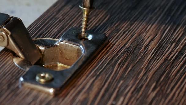 Nahaufnahme von Einschrauben einer Schraube mit Schraubendreher