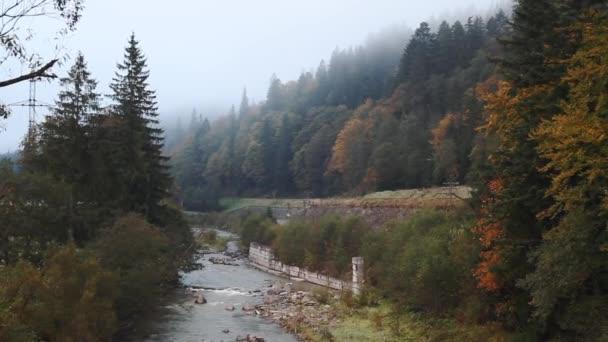 Podzimní les v mlze, jímž řeka teče v Karpatech