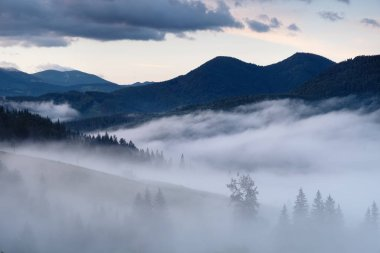 Mountain valley in the mist. Beautiful natural landscape at the summer time during sunrise