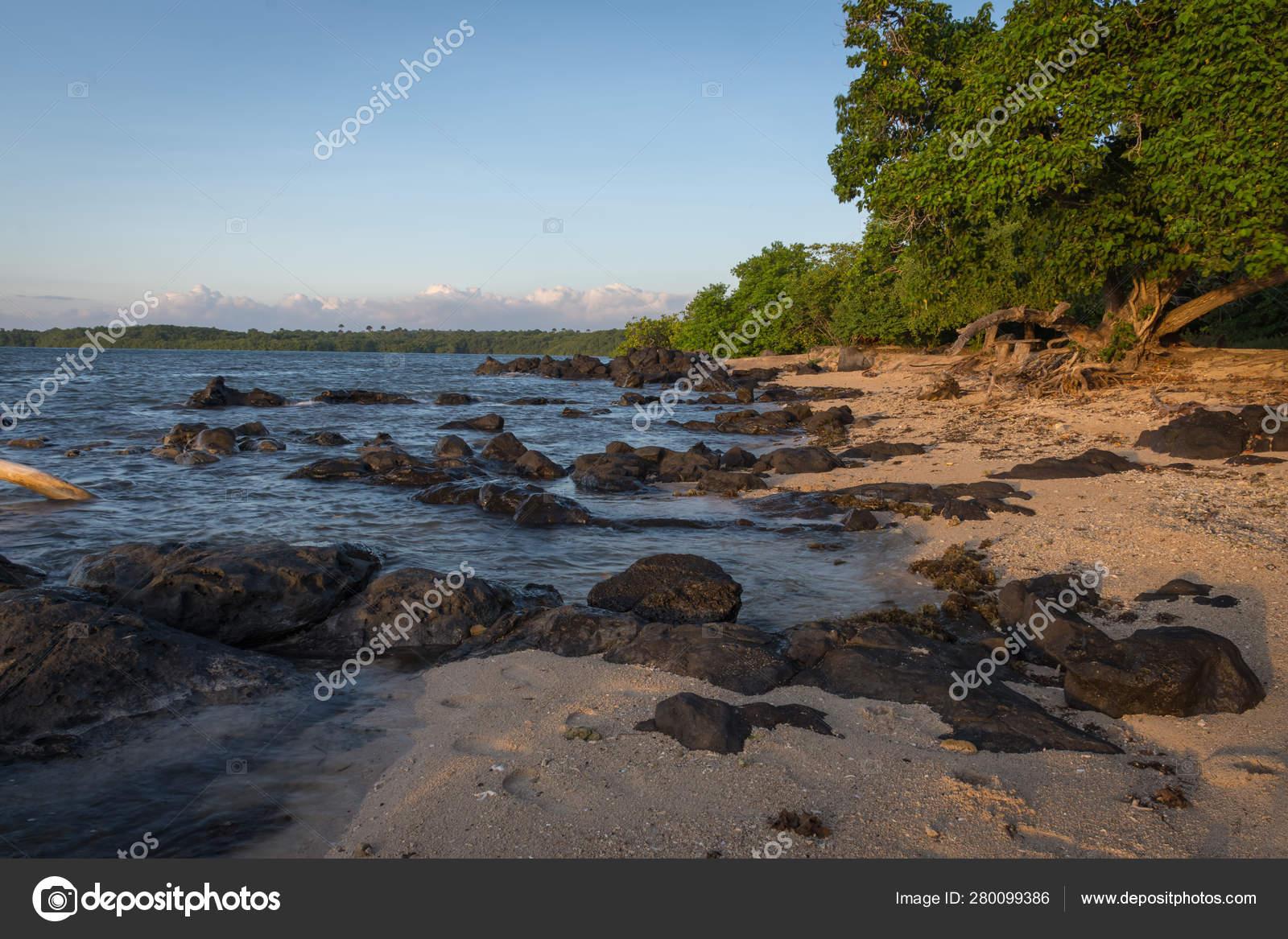 pre order hot product promo code Cena bonita da praia de Bama, Baluran. O Parque Nacional de ...