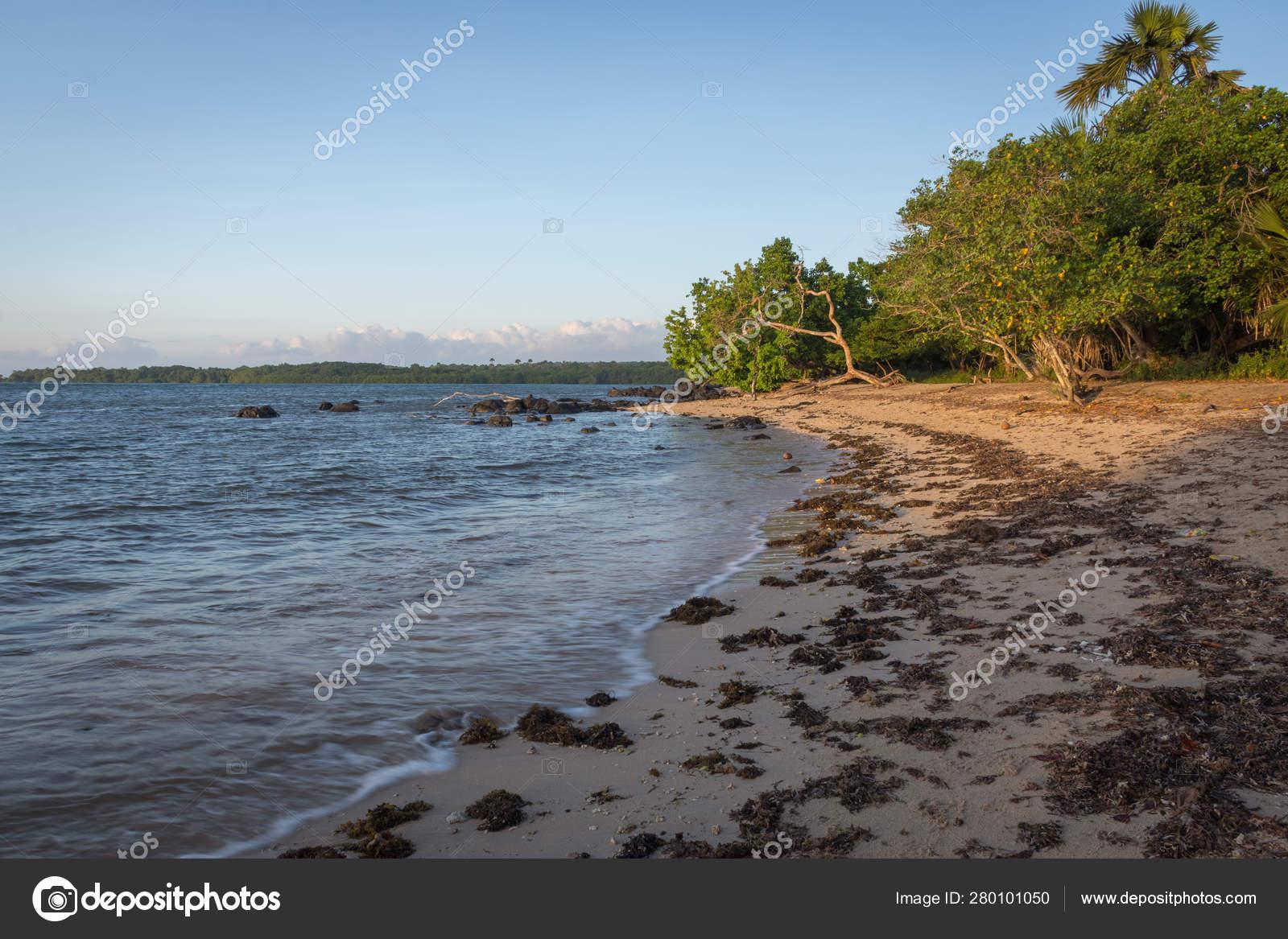 new release new list cheap price Hermosa escena de la playa de Bama, Baluran. El Parque ...