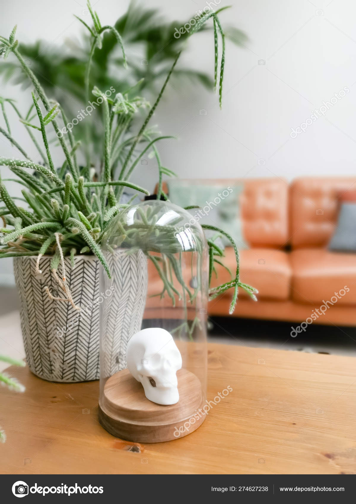 White Porcelain Animal Head In A Glass Bell Jar On A Wooden Coffee